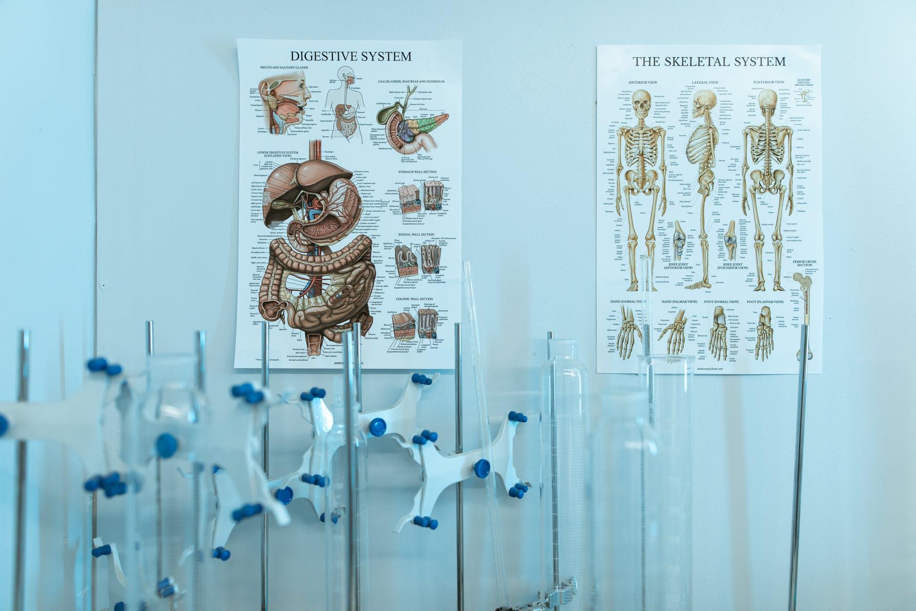 que-saber-para-estudiar-enfermeria-oaxaca-urse-3